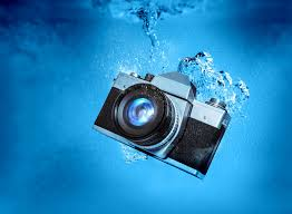 Cours de Photo sous-marine le 25 Novembre